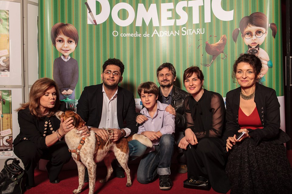 domestic-timisoara-review